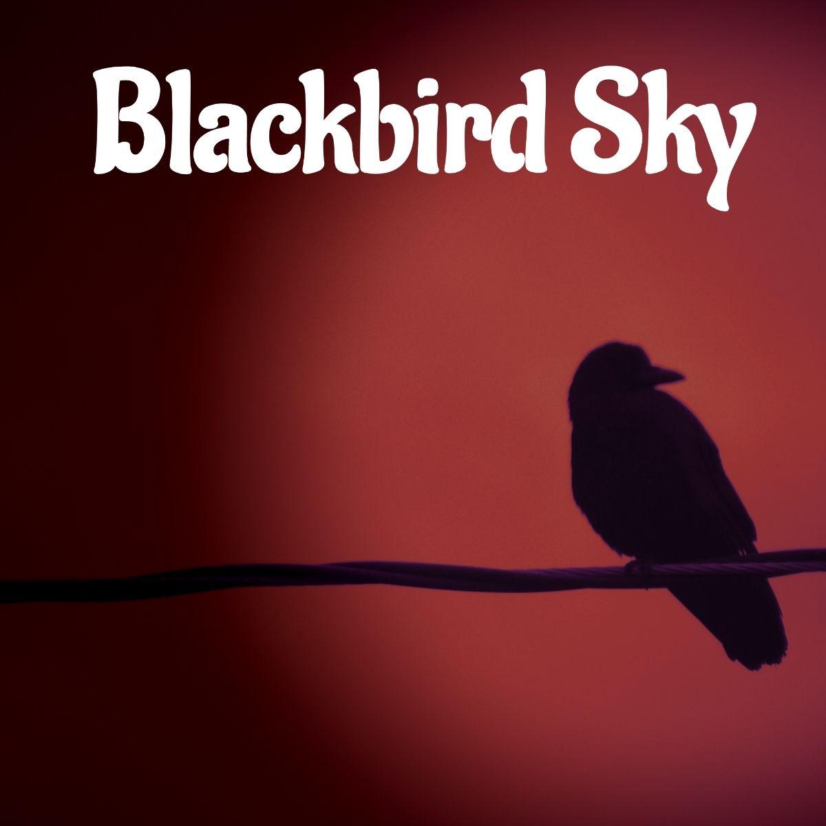 Blackbird Sky