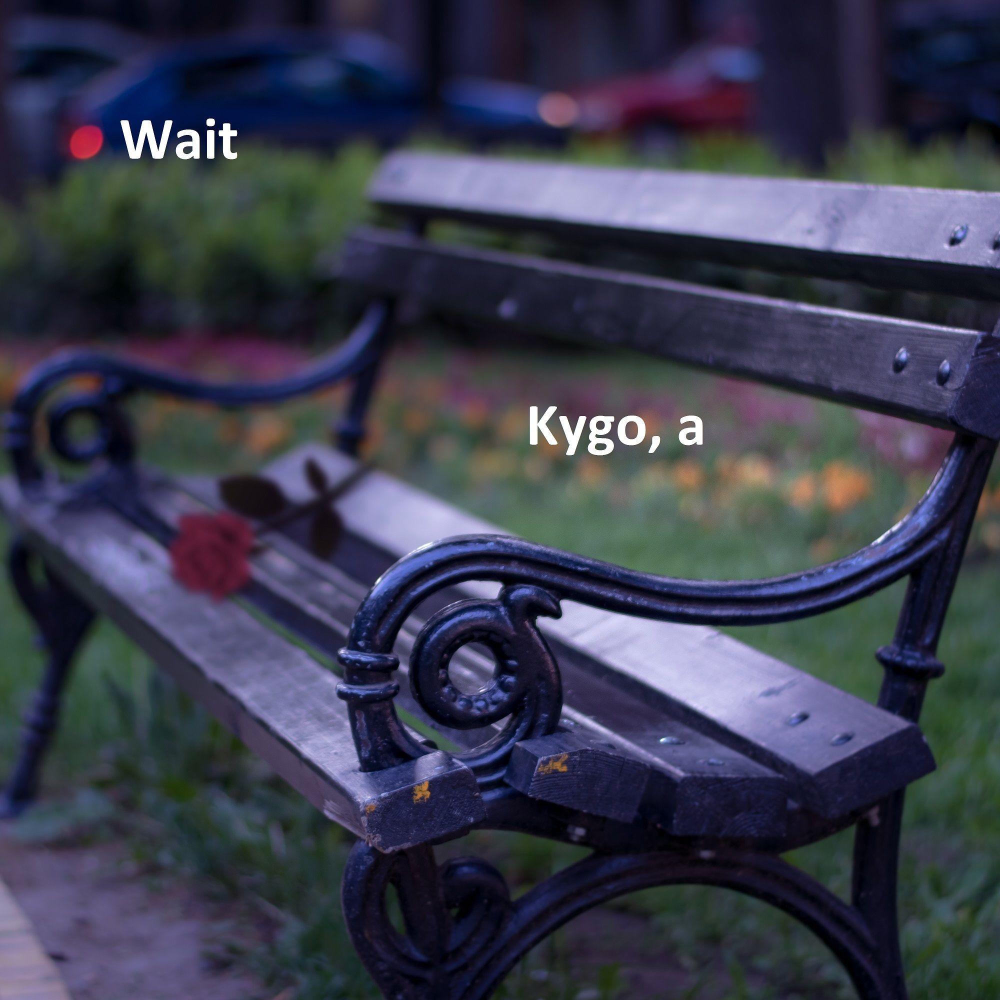 Kygo, a
